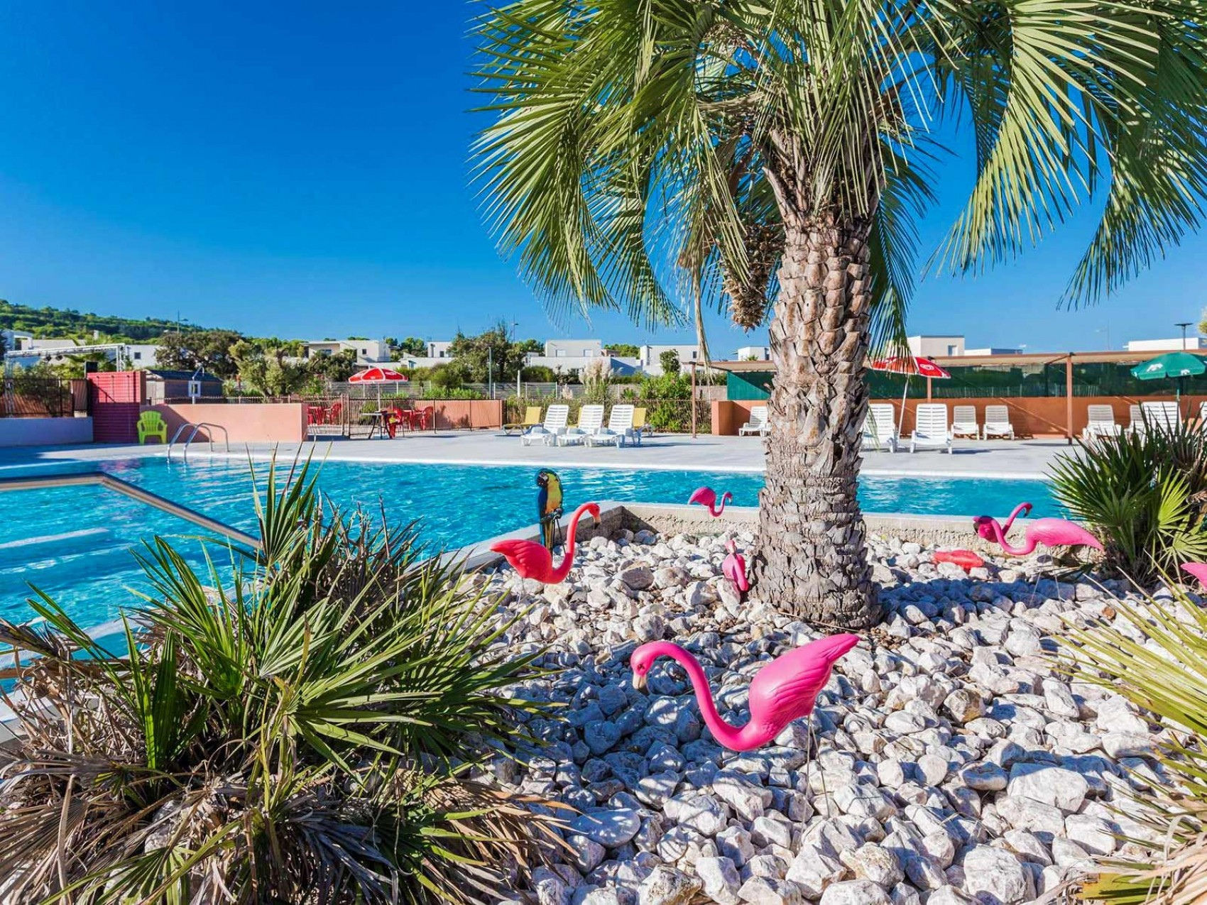Camping swimming pool Agde, Languedoc-Roussillon