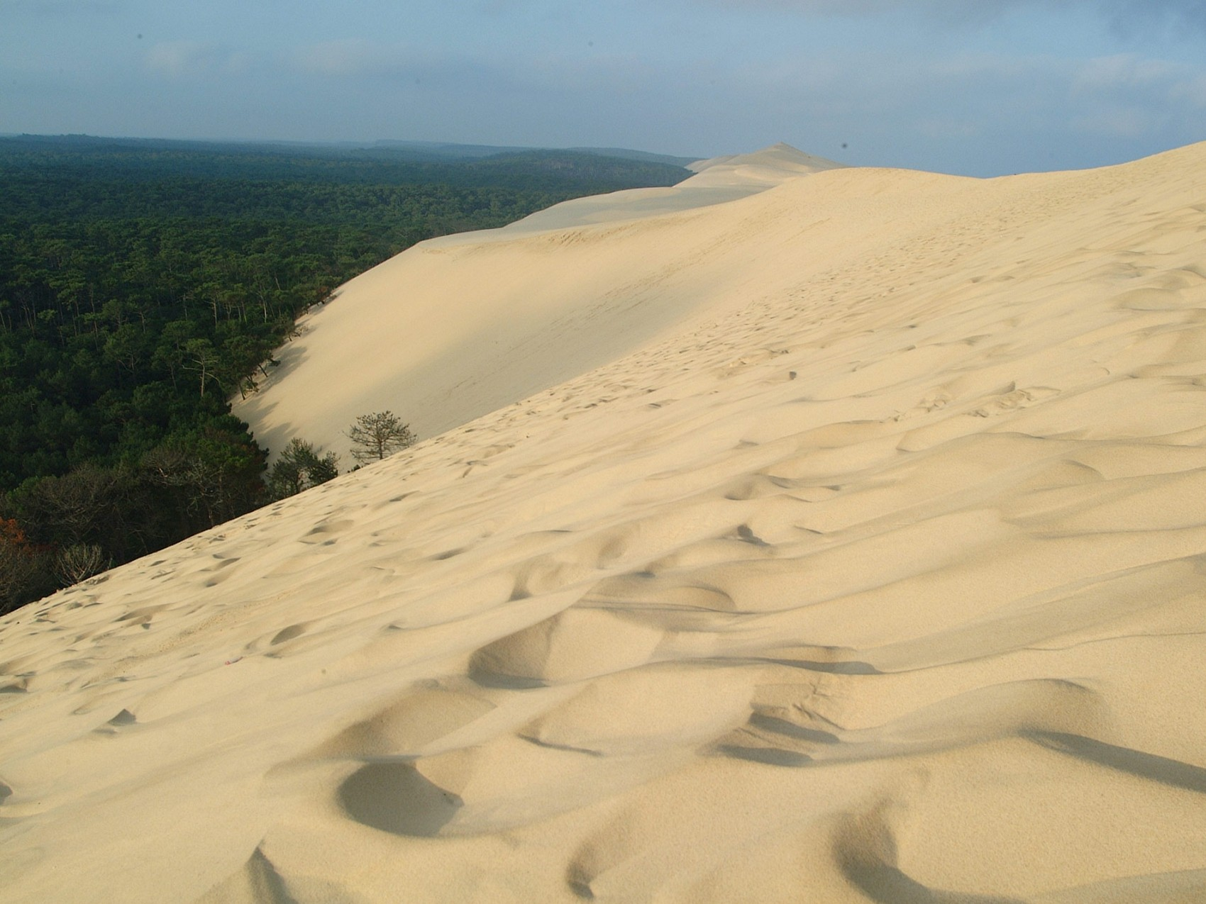 When Camping Near The Dune Du Pyla Choose A Yelloh Village Campsite